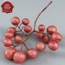 Rowan Fruit 3D models