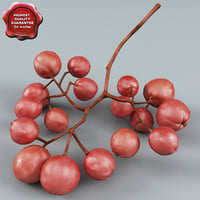 3d model rowan fruit