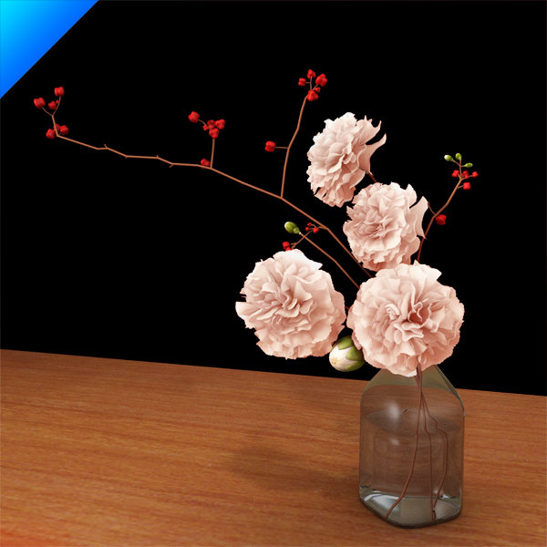 carnation in glass vase_01.jpg