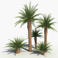 realistic palm trees 3d max