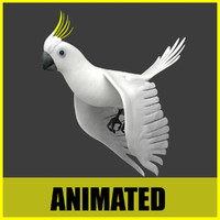 maya cockatoo flying animation