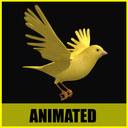 canary 3D models