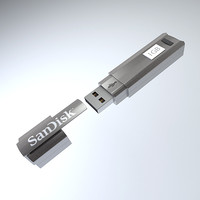 Cruzer Professional USB Flash Drive