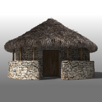 Iron Age House II