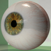 Realistic Human Eye