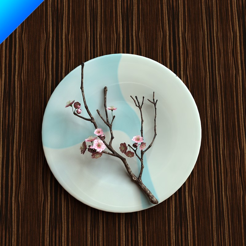 plum blossom in ceramic plate_01.jpg