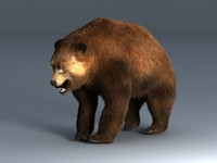 3ds max brown bear