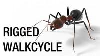 Ant_Walk