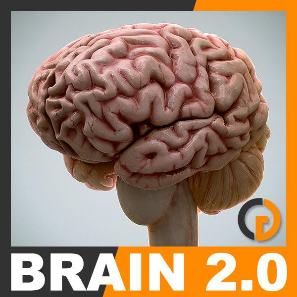 BrainV2_th001.jpg