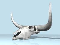 3d aurochs skull model