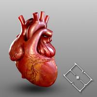 maya human heart