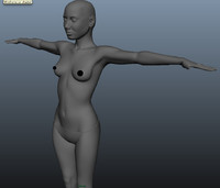 3d female modeled