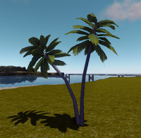 3d model twin palmtree