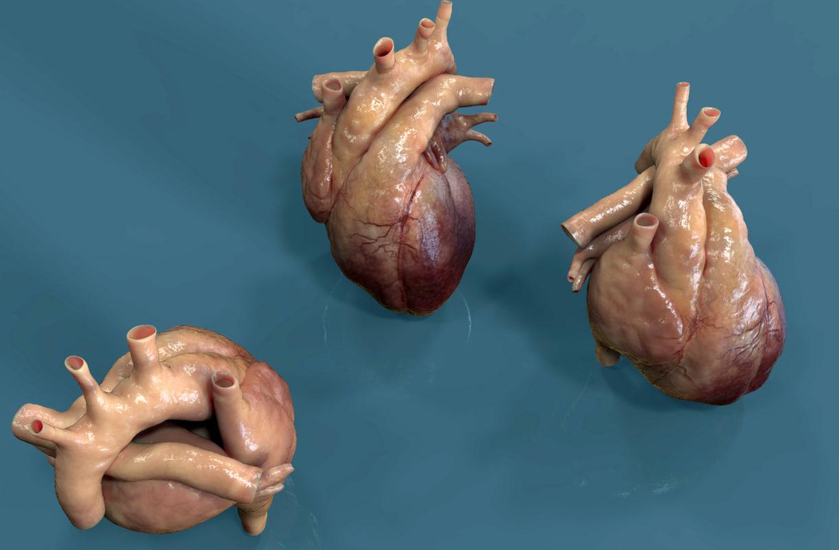 srce.116.jpg