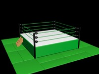Professional Wrestling Ring