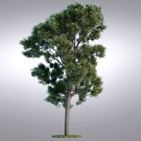 HI Realistic Series Tree - 102