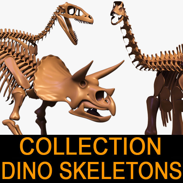 Dino_skeleton_leo3dmodels_00.jpg
