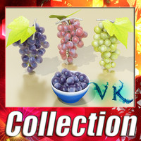 Grapes collection.