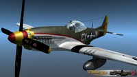 P51 Yellow tail
