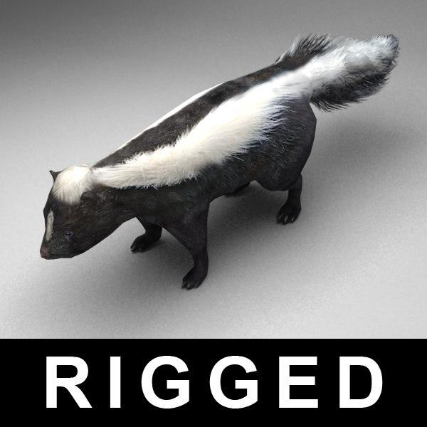 skunk_v0.jpg