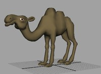 Camel low poly