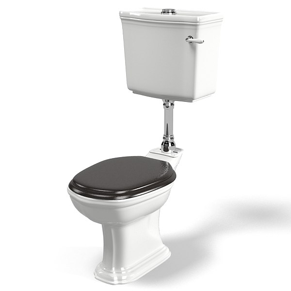 Devon & Devon New Etoile wc floor toilet traditional english classic.jpg