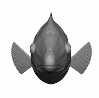 Checkerboard Wrasse Fish - OBJ format