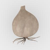 3d model garlic