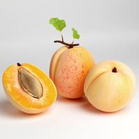 apricot 3d 3ds