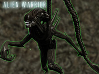 alien xenomorph warrior max