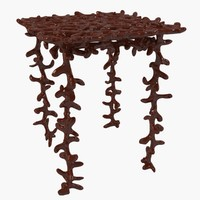 max table coral