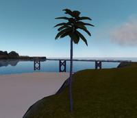 3d model tall palmtree