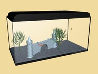 3d fishtank fish model