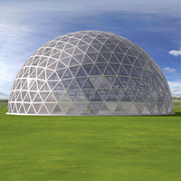 Geodesic dome 8th frequency