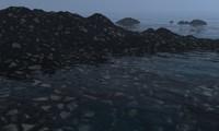 scene shore max
