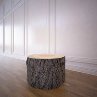 3d model tree trunk coffee table