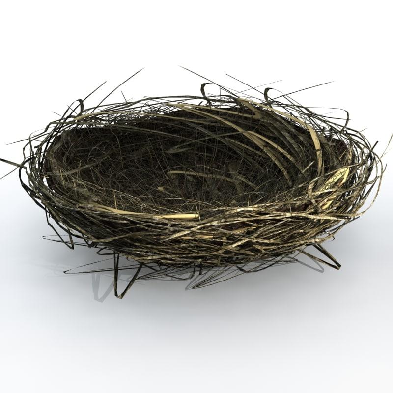 Nest_0000.jpg