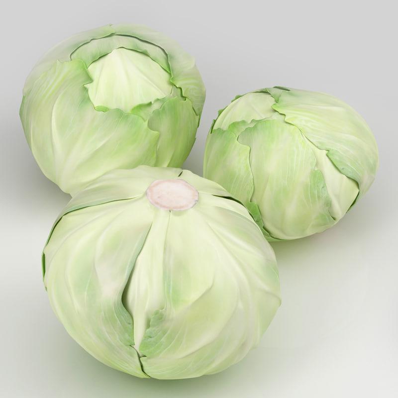cabbage_1.jpg