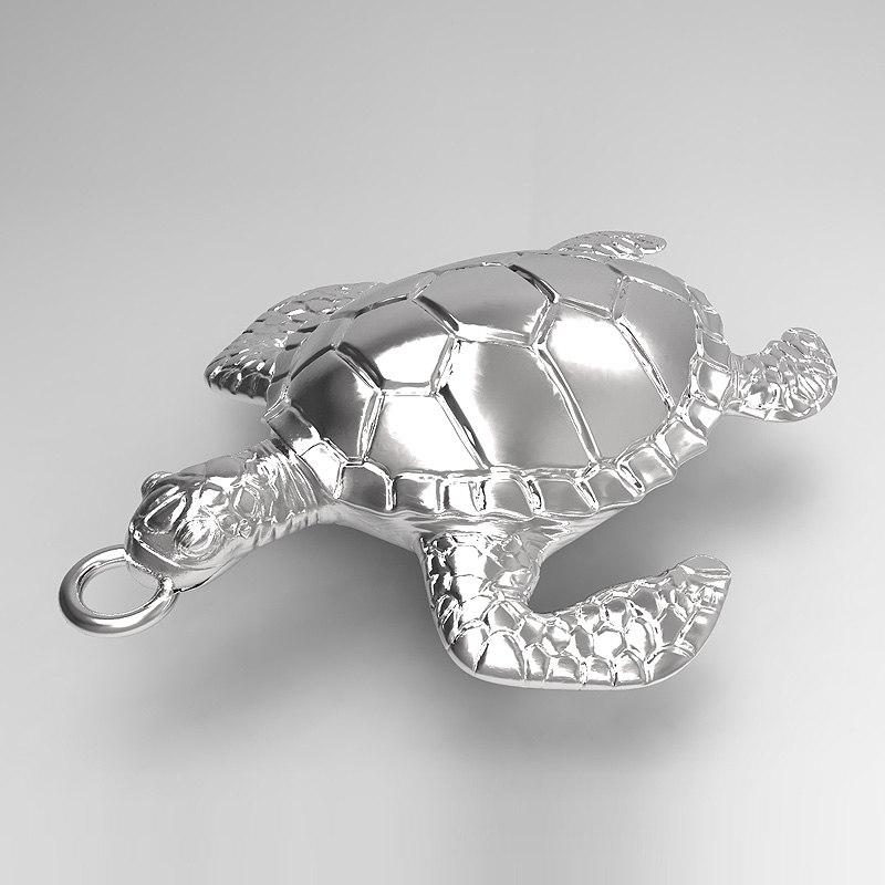 Turtle01_04.jpg