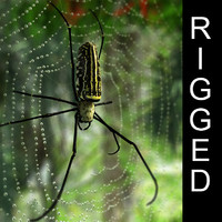 golden silk spider 3d model