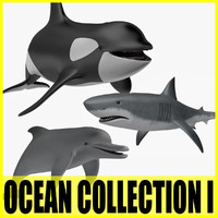 Ocean Collection I - 3 Animated animals