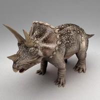 Triceratops animated
