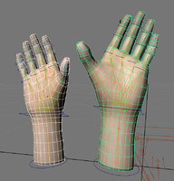 3d rigged male hand