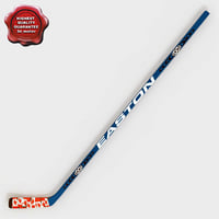 hockey stick v5 3d max