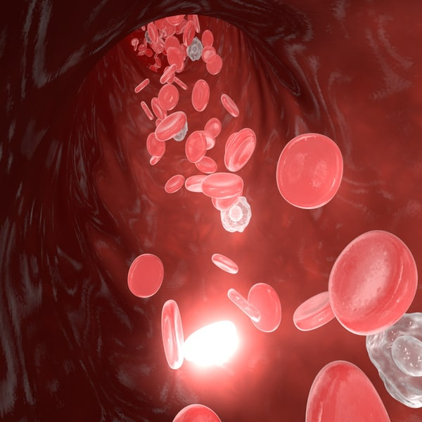 3d model laminar blood flow - Blood flow - Laminar flow... by ScienceEngine