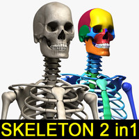 human skeletons 2 1 3ds