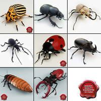 Bugs Collection V3