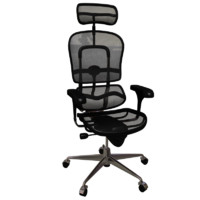 Ergon Human President Chair