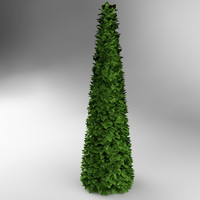 3d bush conic model