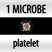 max microbes micro organisms